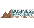 businessimprovementmining